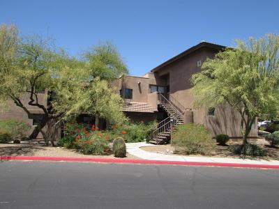 Tucson Condo For Sale: 5855 N Kolb Road #4102