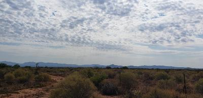 Cochise County Residential Lots & Land For Sale: 17 B Highway 82