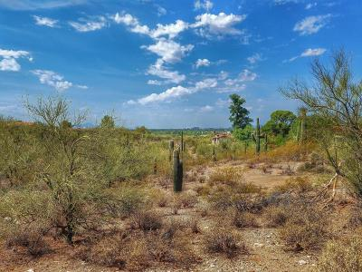 Residential Lots & Land Active Contingent: N Camino Del Santo #212