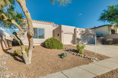 Single Family Home Active Contingent: 5285 N Spring View Drive