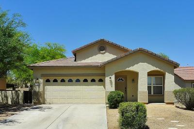 Oro Valley Single Family Home For Sale: 13158 N Tanner Robert Drive