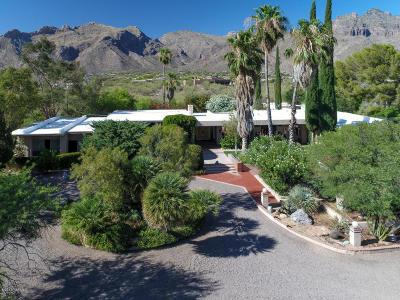 Tucson Single Family Home For Sale: 7101 N Corrida De Venado