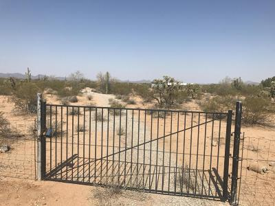 Residential Lots & Land For Sale: 5101 N Avra Road
