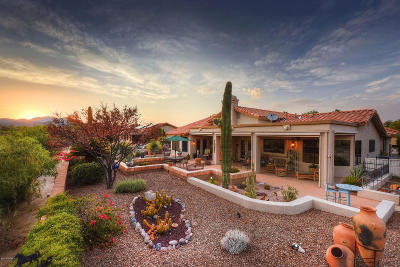 Oro Valley Single Family Home For Sale: 14313 N Alamo Canyon Drive