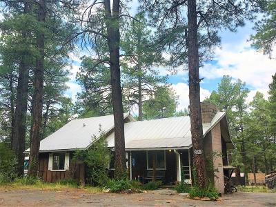 Flagstaff Single Family Home For Sale: 3654 Shoshone