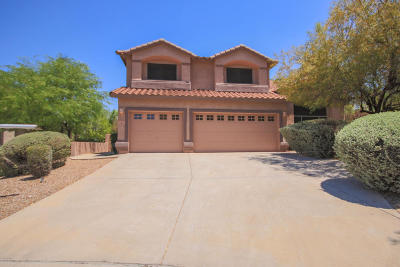 Single Family Home For Sale: 4774 N Coop Canyon Place