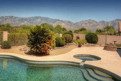 Oro Valley Single Family Home Active Contingent: 154 W Red Pepper Place