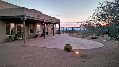 Oracle Single Family Home For Sale: 4801 E Mt Lemmon Highway