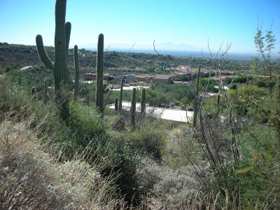 Residential Lots & Land Active Contingent: 2590 E Calle Sin Ruido #162
