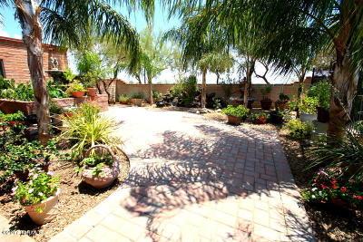 Single Family Home For Sale: 1302 E Thunderhead Circle