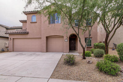 Tucson Single Family Home For Sale: 10822 E Deep Sky Drive