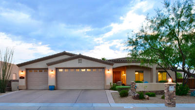 Sahuarita Single Family Home For Sale: 17898 S Camino De Loreto