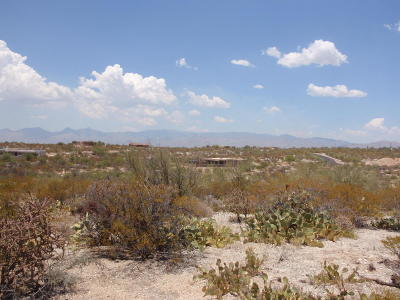Residential Lots & Land For Sale: 11785 E Spanish Ridge Place