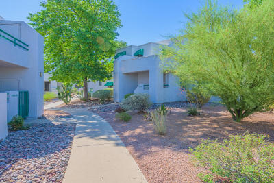 Tucson Single Family Home Active Contingent: 7949 E Colette Circle #155
