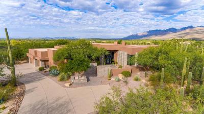 Tucson Single Family Home For Sale: 3835 N Whiptail Wash Place