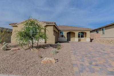 Marana Single Family Home For Sale: 7200 W Falcon View Ps Pass W
