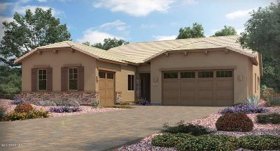 Oro Valley Single Family Home For Sale: 12967 N Eagles Summit Drive