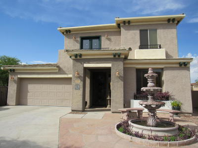 Sahuarita Single Family Home For Sale: 101 E Placita Lago Bello