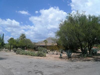 Tucson Single Family Home For Sale: 6940 N Vista Place