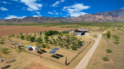Cochise County Single Family Home For Sale: 731 N Cochise Stronghold Road