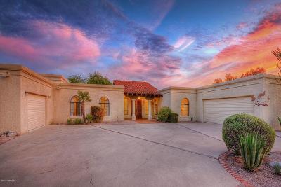 Tucson Single Family Home For Sale: 802 E Placita De Roberta