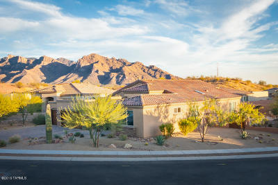 Oro Valley Single Family Home For Sale: 10464 N Elizabeth Morning Place
