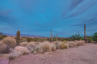 Residential Lots & Land For Sale: 9630 E Sabino Estates Drive #5