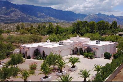 Tucson Single Family Home For Sale: 4695 E Rail N Road