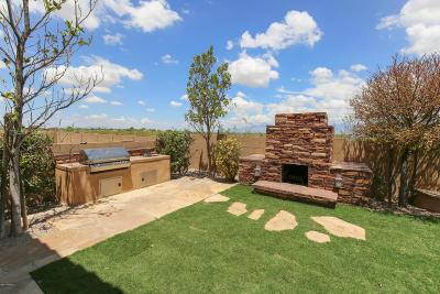 Tucson Single Family Home For Sale: 10457 E Rita Ranch Crossing Circle