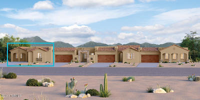 Oro Valley Single Family Home For Sale: 50 W Antelope Canyon Place