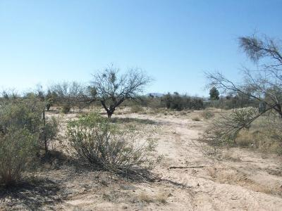 Residential Lots & Land For Sale: 9181 S Fillmore Road