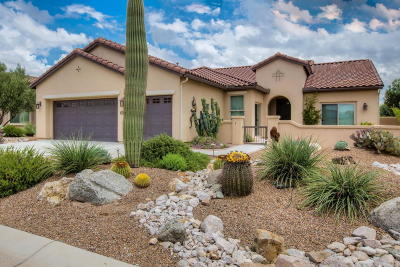 Oracle Single Family Home Active Contingent: 31793 S Gulch Pass Road