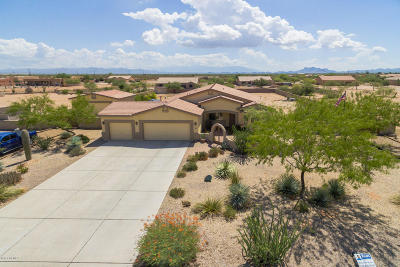 Marana Single Family Home For Sale: 10256 N Avra Vista Drive
