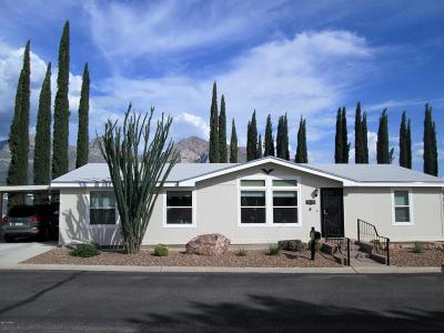 Oro Valley Single Family Home Active Contingent: 10736 N Pyrenees Avenue