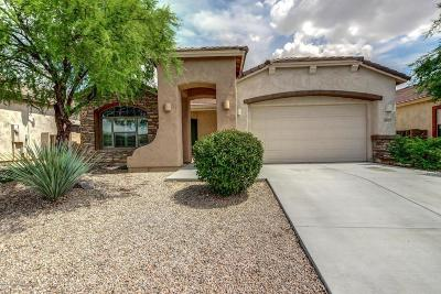 Oro Valley Single Family Home For Sale: 1253 W Faldo Drive