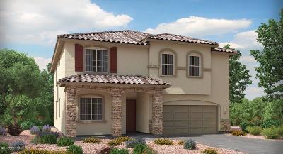 Marana Single Family Home For Sale: 11084 W Fountain View Drive W