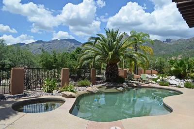 Single Family Home For Sale: 5935 N Sabino Canyon Road