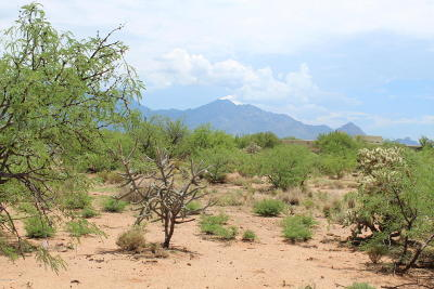 Green Valley Residential Lots & Land For Sale: 3016 S Corte Amarilla #27