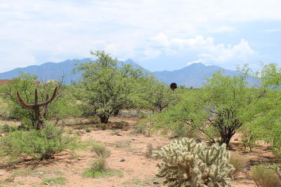 Green Valley Residential Lots & Land For Sale: 352 E Corte Tierra Morena E #16