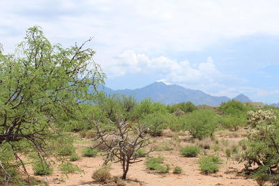 Green Valley Residential Lots & Land For Sale: 374 E Corte Tierra Morena E #18
