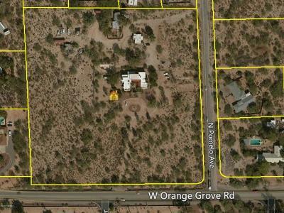 Pima County Single Family Home For Sale: 6479 N Pomelo Avenue