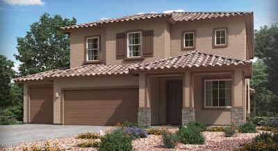 Marana Single Family Home For Sale: 11060 W Fountain View Drive W