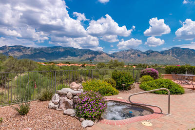 Oro Valley Single Family Home For Sale: 14072 N Clarion Way