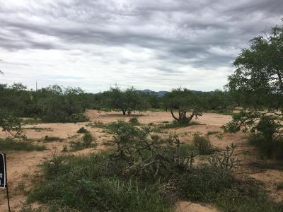 Residential Lots & Land For Sale: 11920 W Desert Turtle Lane