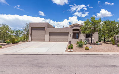 Vail Single Family Home Active Contingent: 14501 E Yellow Sage Lane
