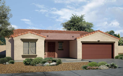 Sahuarita Single Family Home For Sale: 15938 S Avenida Canica