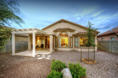 Catalina Single Family Home Active Contingent: 39827 S Buena Vista Drive