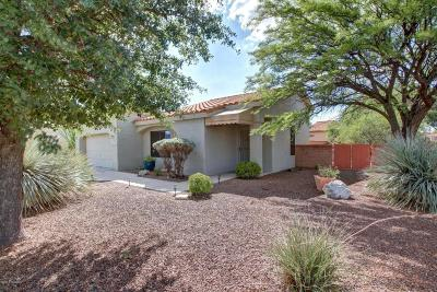 Oro Valley Single Family Home For Sale: 14381 N Rusty Gate Trail N