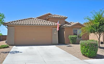 Marana Single Family Home For Sale: 11521 W Stone Hearth Street