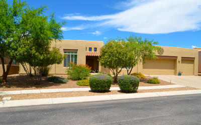 Single Family Home For Sale: 16995 S Vanilla Orchid Drive